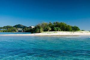Tweed beach
